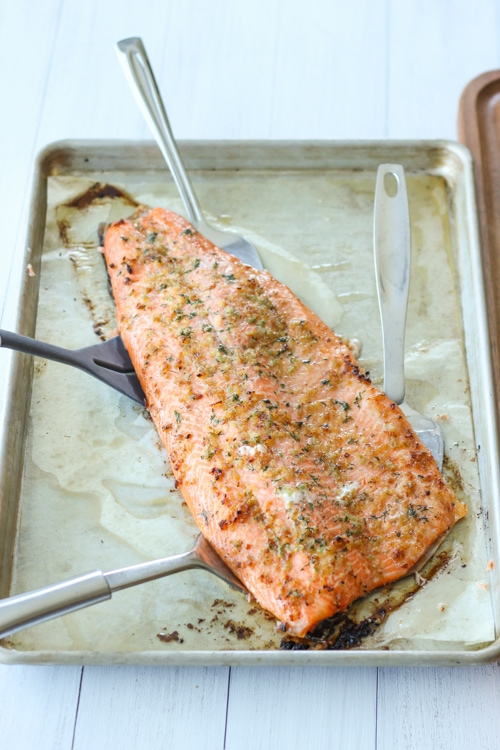 Baked Steelhead Trout Fillet-1-11