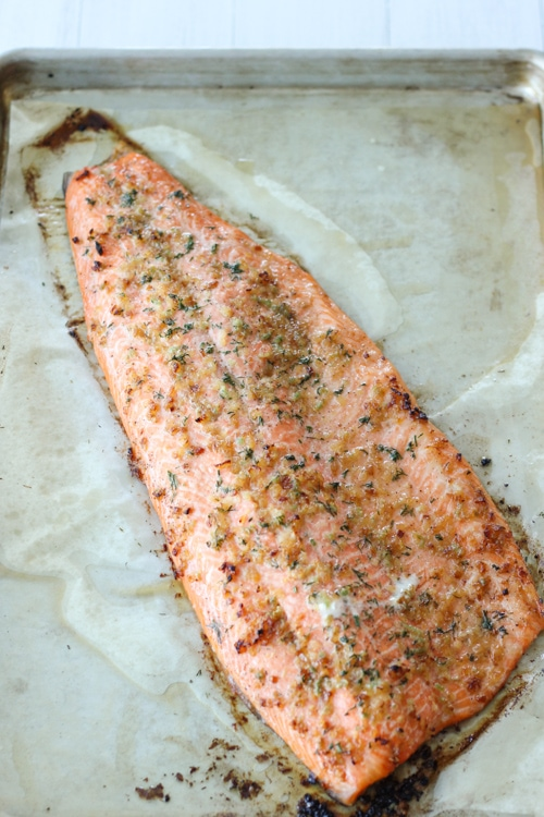 Baked Steelhead Trout Fillet-1-9