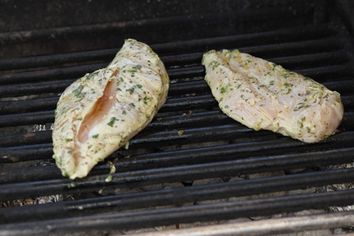 Lemon Herb Grilled Chicken-1-4