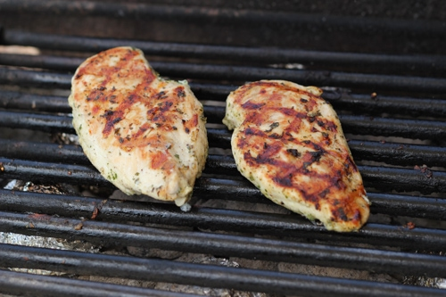 Lemon Herb Grilled Chicken-1-5