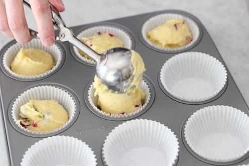 Cranberry Orange Muffins-1-29