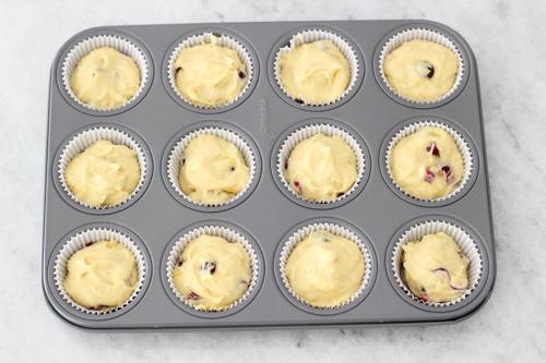 Cranberry Orange Muffins-1-30