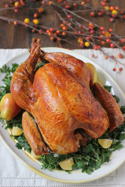 Easy, Fuss-Free Roast Turkey-1-9