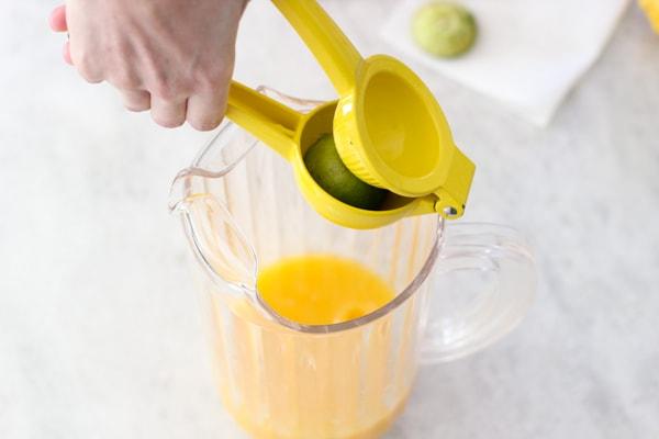 Citrus Pineapple Punch-1-17