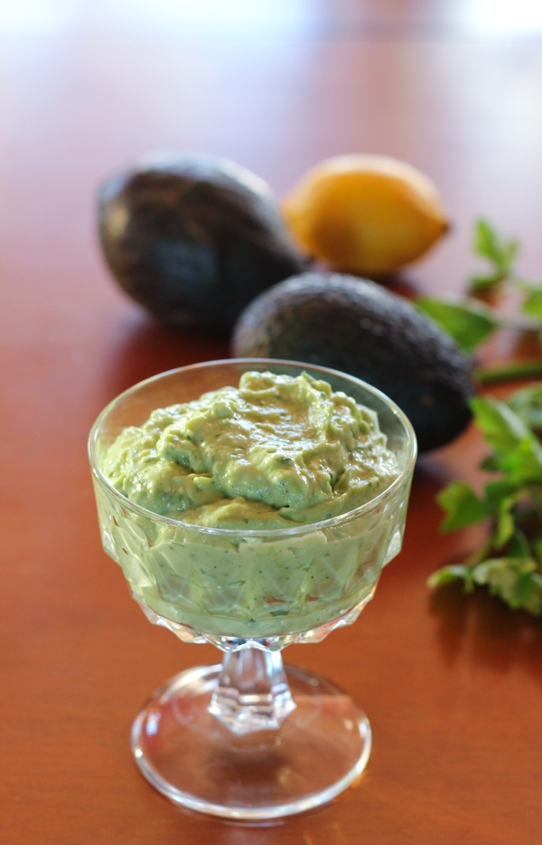 Creamy Avocado Spread-1-12