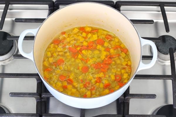 Golden Beet Soup-1-28