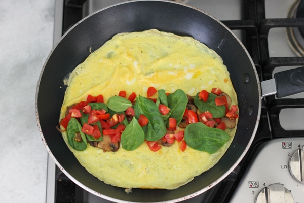 Deluxe Veggie Omelet-1-15