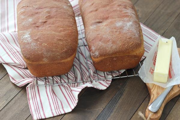 Whole Wheat Bread-1-20