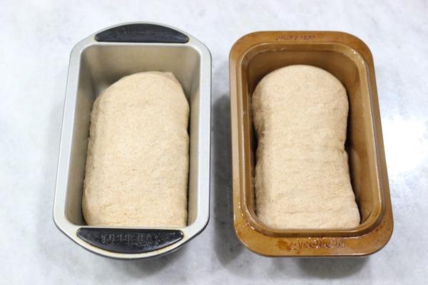 Whole Wheat Bread-12