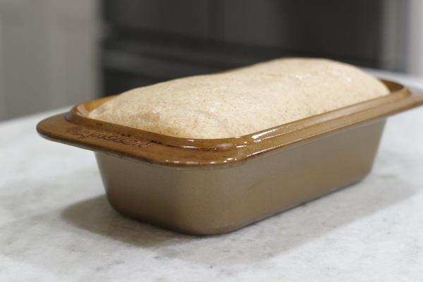 Whole Wheat Bread-13