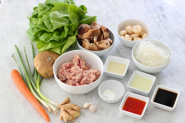 Chicken Lettuce Wraps-1-14