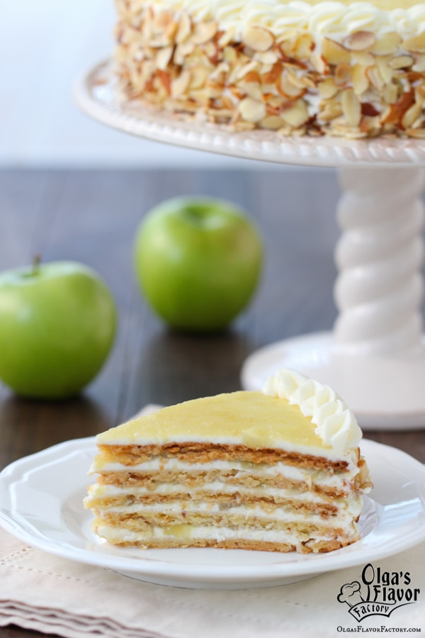 Apple Almond Cake-33