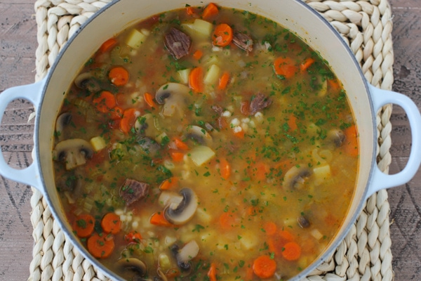 Beef, Vegetable and Barley Stew-11