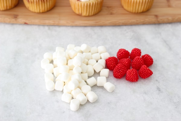 Raspberry Swirl Cupcakes-13