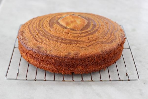 Zebra Cake-1-14 copy