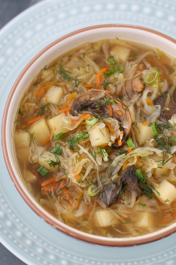 Closeup shot of a bowl of Cabbage and Sauerkraut Soup with mushrooms, Russian Shchi